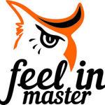feelin-master