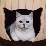 Houses for cats - Ярмарка Мастеров - ручная работа, handmade