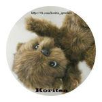koritsa-toy