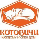 kotovichi