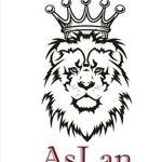 aslanmebel