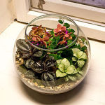 Флорариумы на заказ - Ярмарка Мастеров - ручная работа, handmade