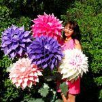 flowersbig