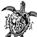 turtle-hr