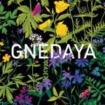 gnedaya-store