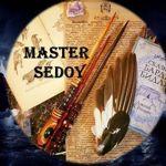 sedoy19