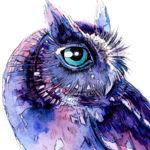 lookowls