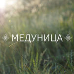 "Мастерская ""Медуница"" - Ярмарка Мастеров - ручная работа, handmade"