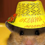 Хомяк и Жаба - Ярмарка Мастеров - ручная работа, handmade