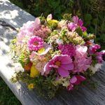 fotoandflowers