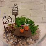 gardenminiature