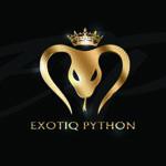 exotiqpython