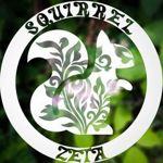 squirrel-zeta