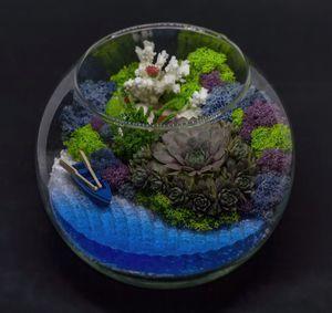 Флорариумы: живые подарки!