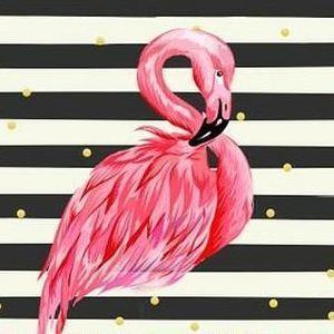_flamingo_boutique